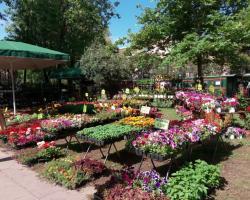 8η Ανθοκομική Έκθεση Δήμου Καλαμάτας